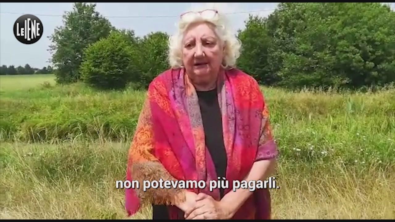 adriana guerra venezia videoappello cani