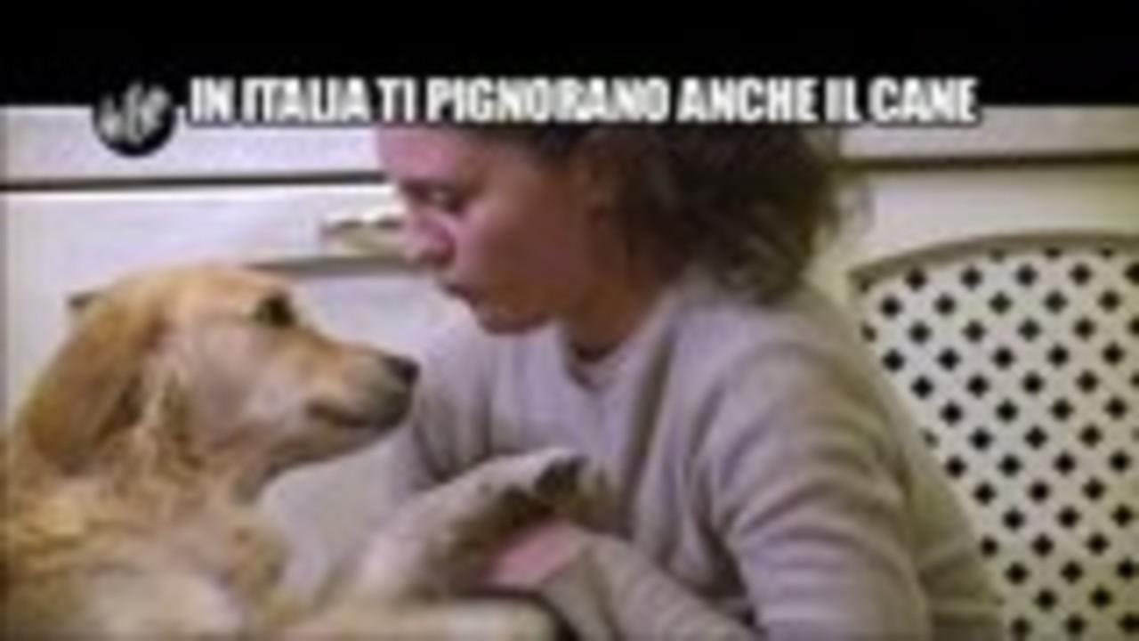 NINA: In Italia ti pignorano anche il cane