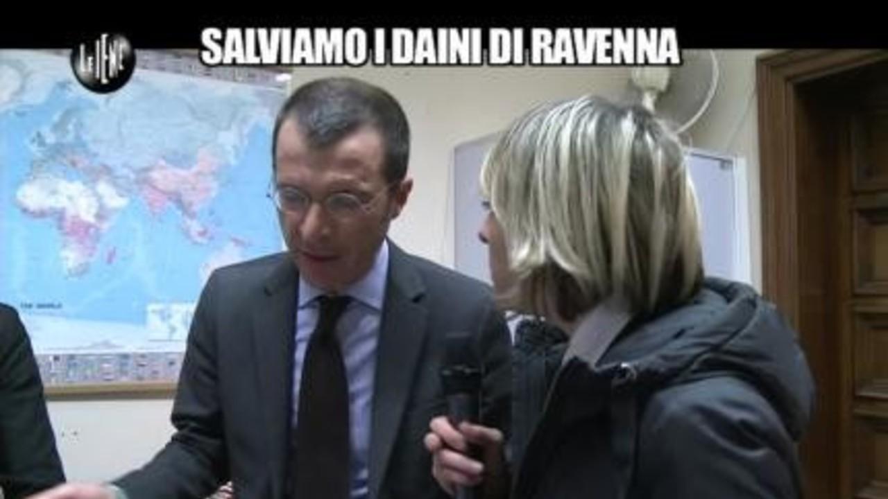 TOFFA: Salviamo i daini di Ravenna