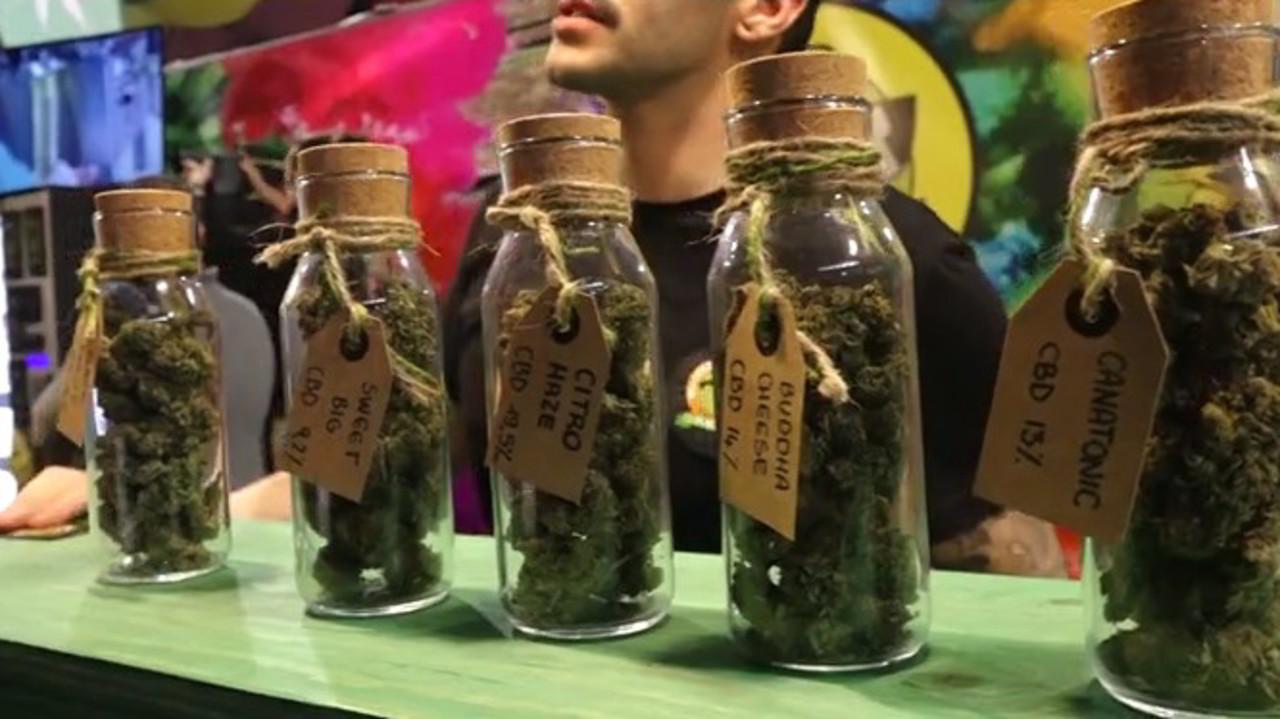 """Cannabis light, il Consiglio superiore di sanità: """"La vendita va bloccata"""""""