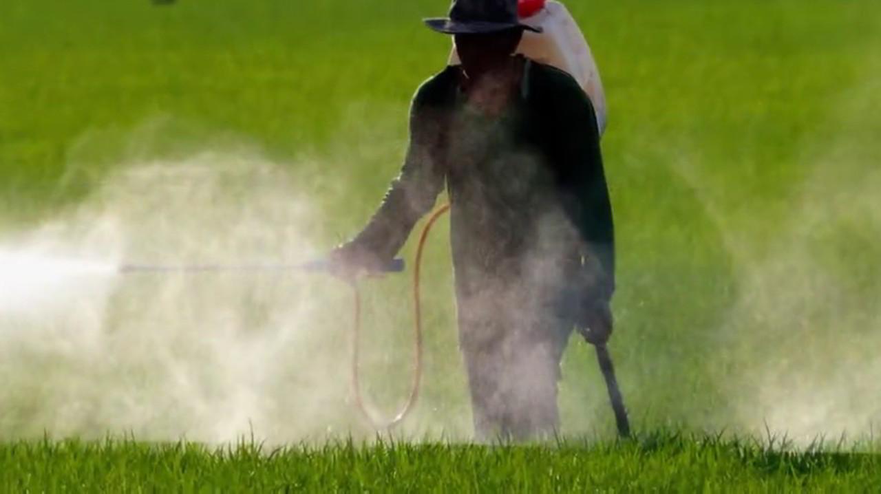 Glifosato, Monsanto: 289 milioni giardiniere malato di cancro