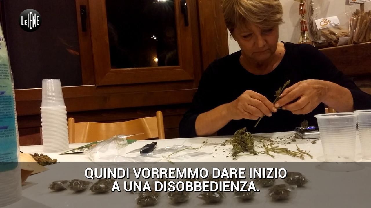 rita bernardini distribuisce cannabis malati