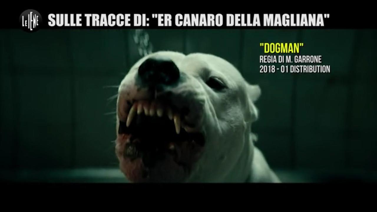 Intervista esclusiva al Canaro di Dogman: le foto