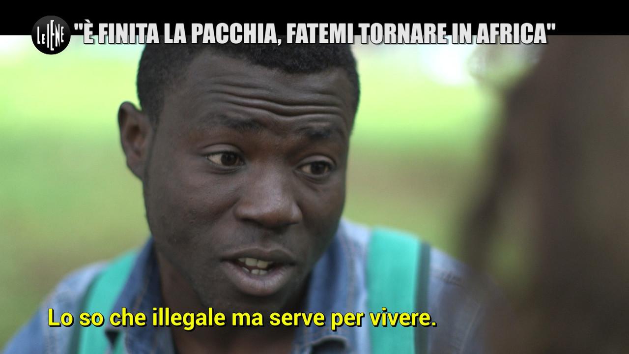 immigrato nigeria pacchia salvini
