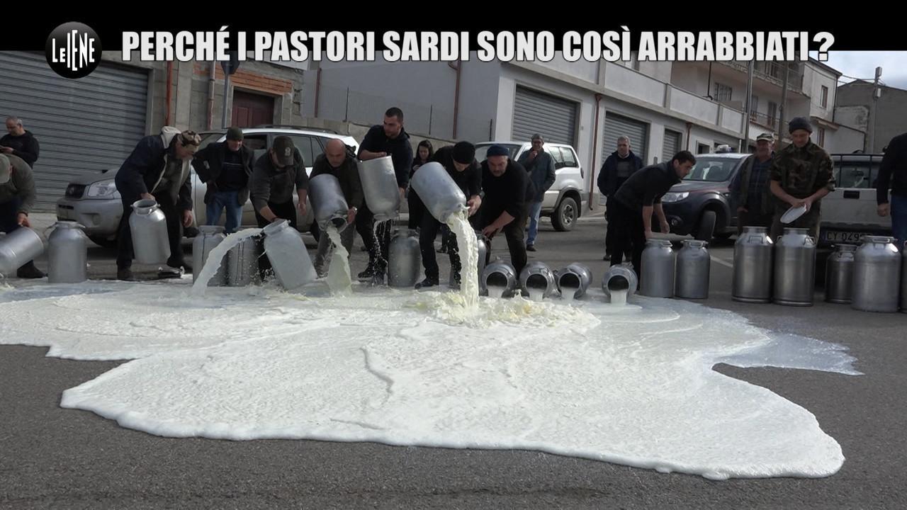 MARTINELLI: Strangolati dal crollo dei prezzi del latte: la protesta dei pastori sardi