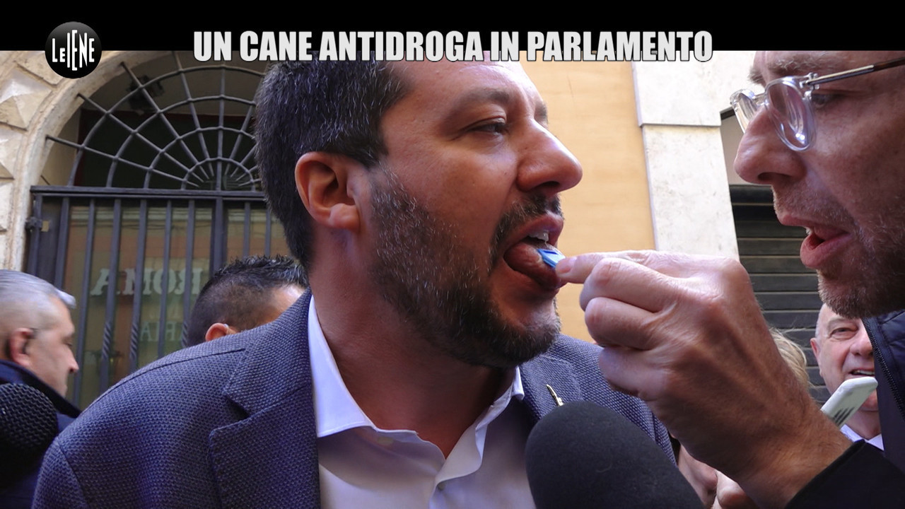 test droga marijuana saliva esito cane politici salvini parlamento
