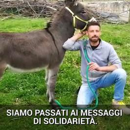asino macchina tony messaggi solidarietà scuse