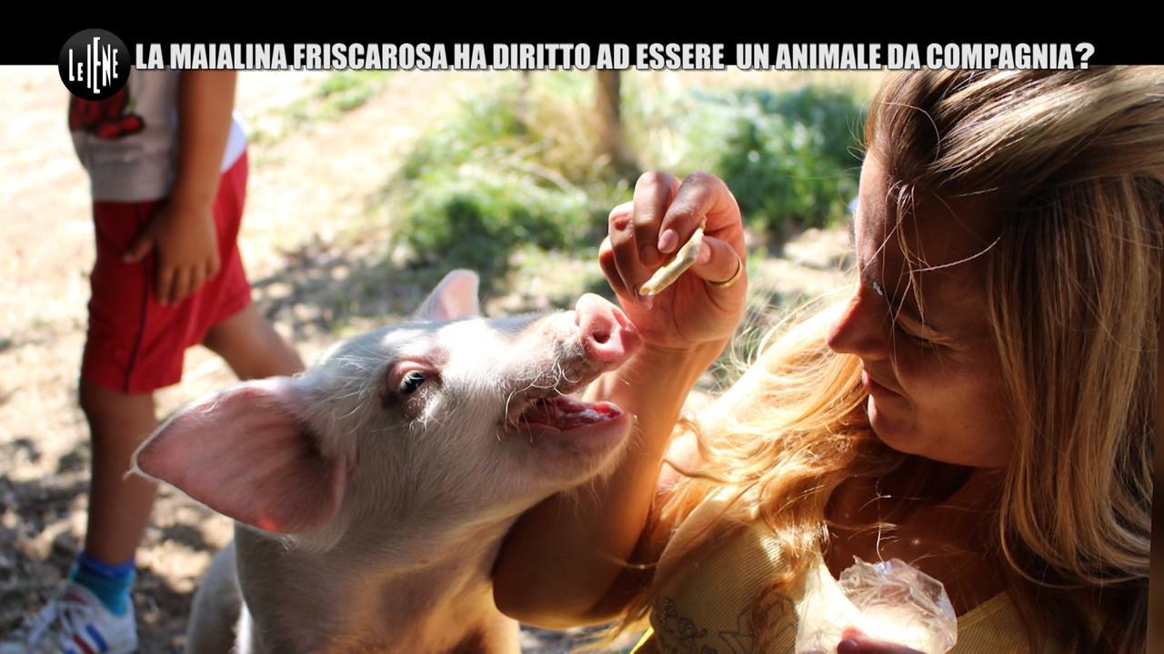 NINA: Aiutiamo la bellissima fattoria degli animali da compagnia di Anna!
