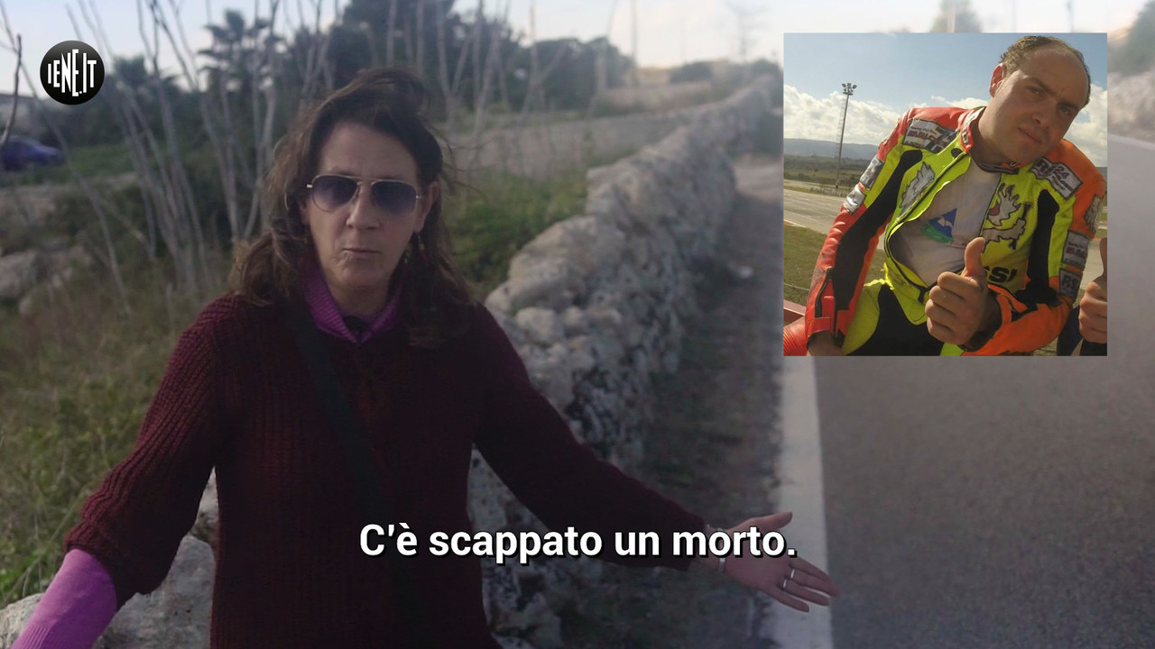 Ucciso dalle mucche vaganti: l'appello della mamma   VIDEO
