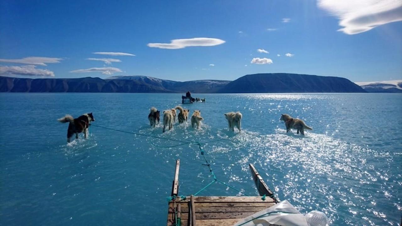 Groenlandia: una slitta sull'acqua simbolo dei ghiacci che si sciolgono