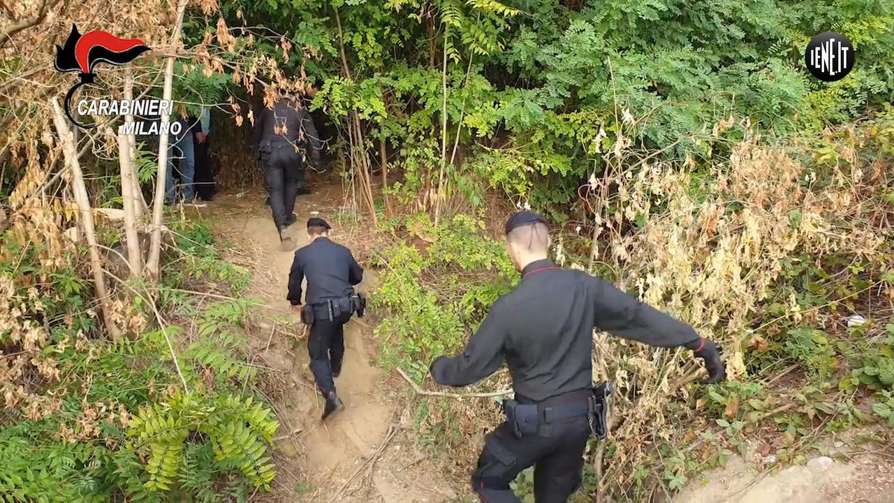 Il blitz dei carabinieri nel boschetto della droga di San Donato Milanese