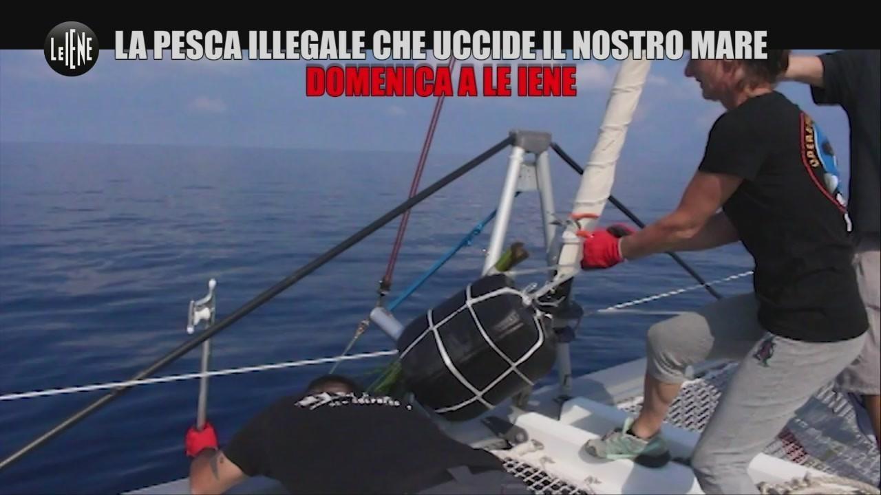 Pelazza illegale mediterraneo mare