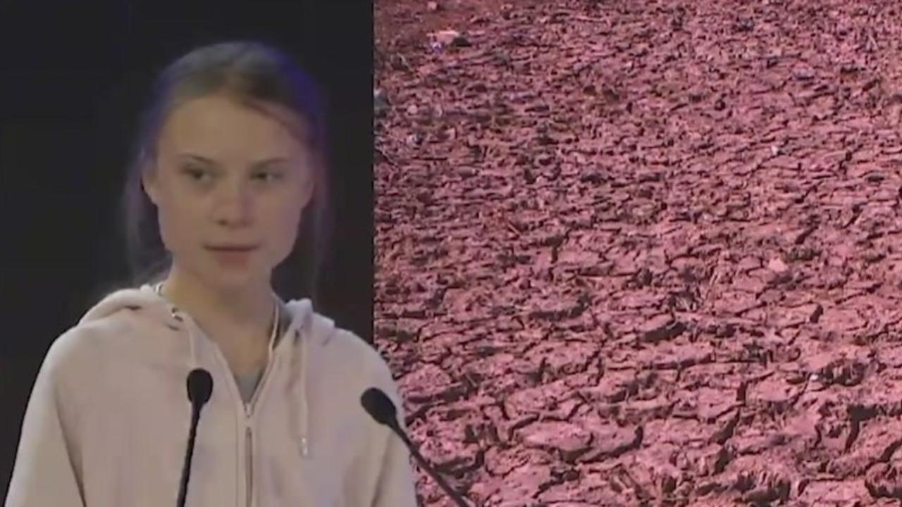 """Greta Thunberg a Davos: """"La casa brucia e voi non fate nulla"""""""