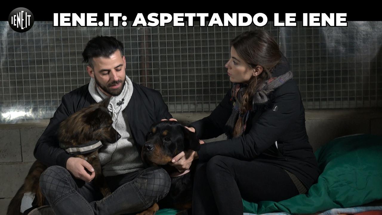 Notte con i cani salvati dalla Cina: chiediamo aiuto a Massimo Boldi