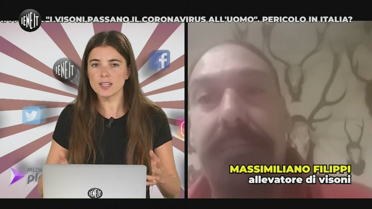 visoni coronavirus uomo Pericolo Italia
