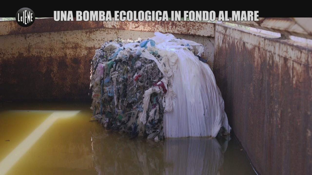 incubo eco-balle plastica cetacei