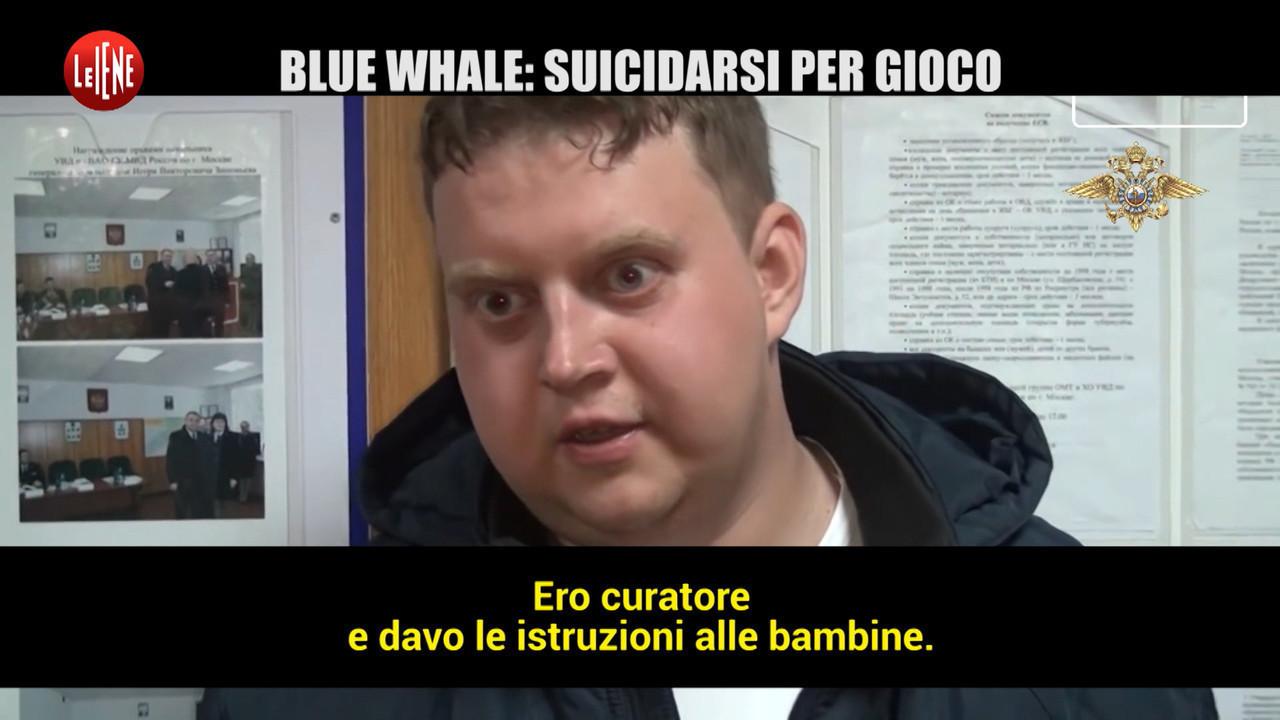 Blue whale jonathan galindo