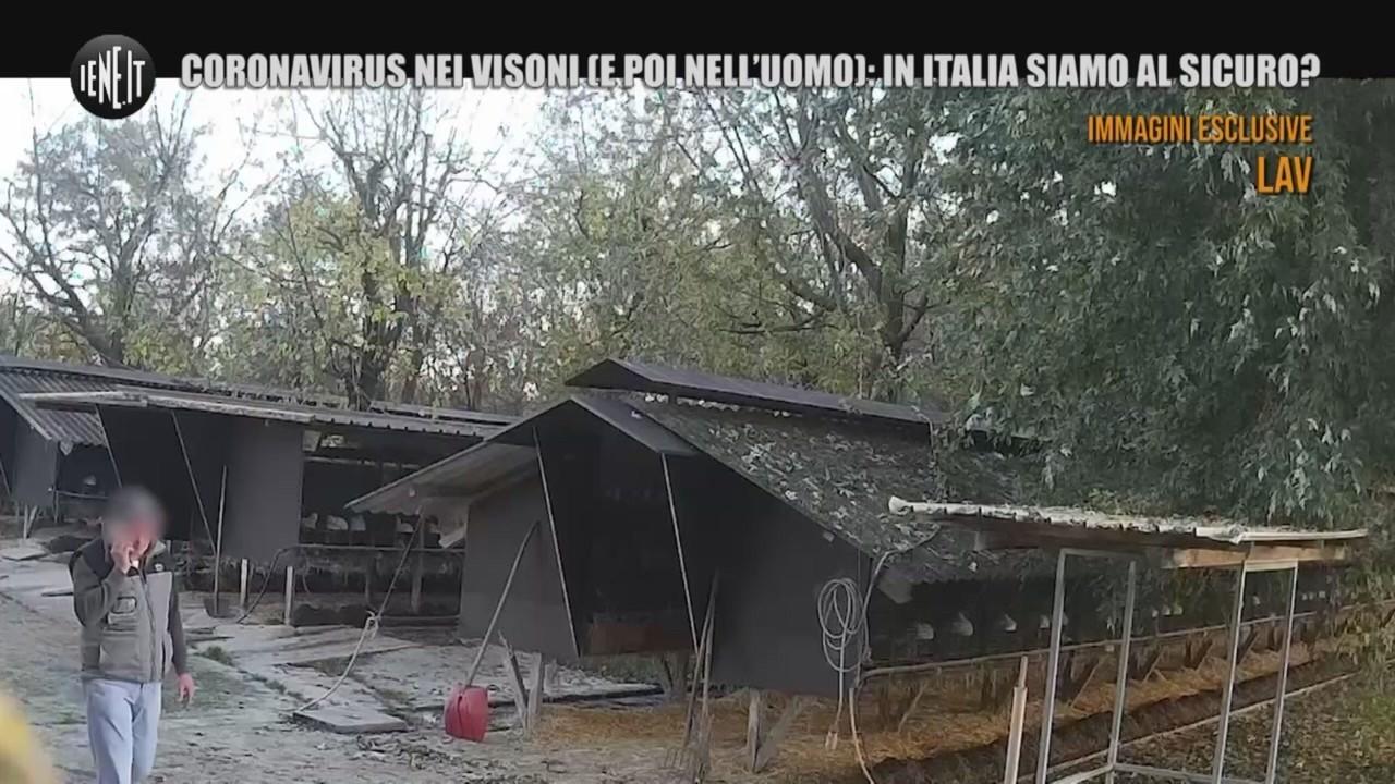 visoni coronavirus italia