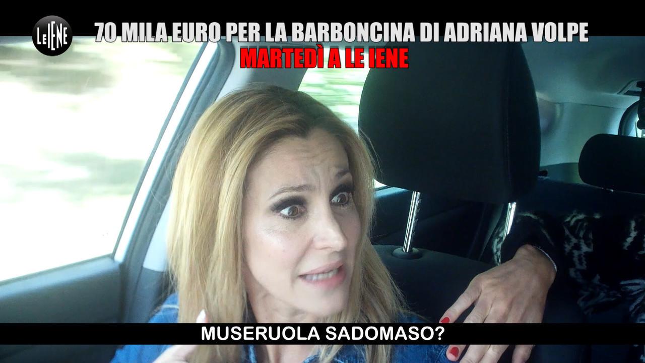 scherzo Adriana Volpe cane