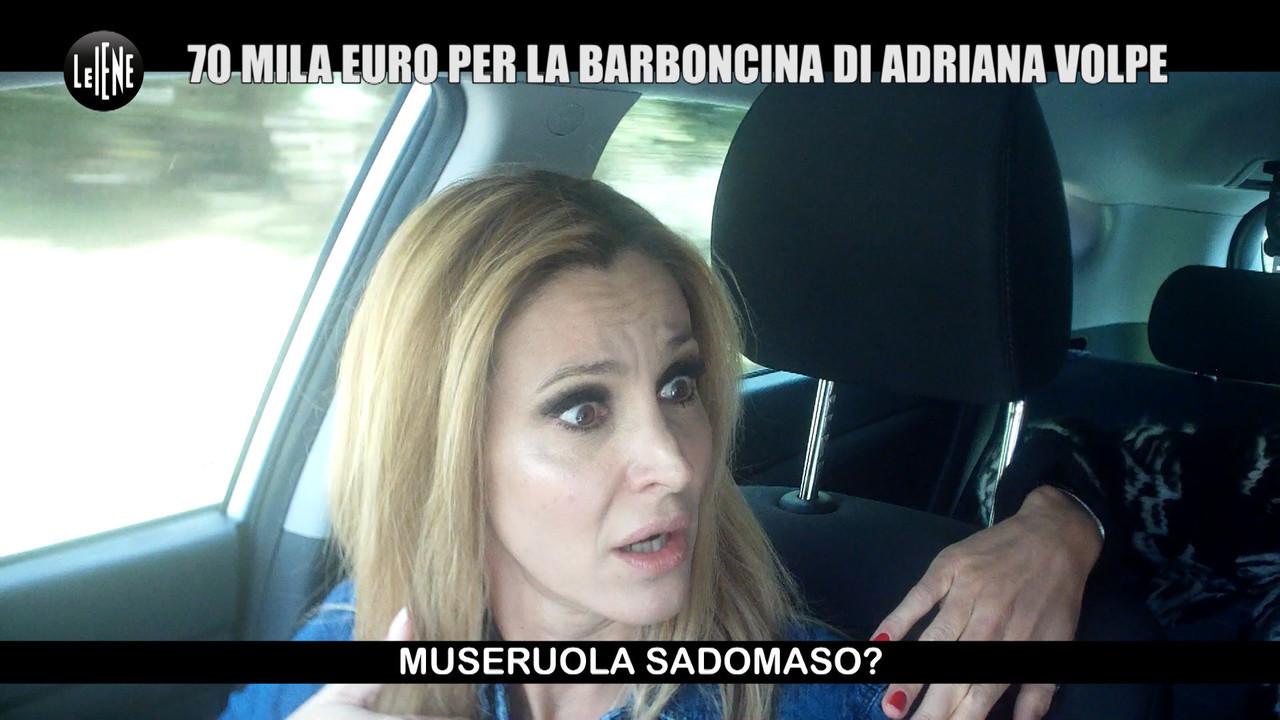 Scherzo Adriana volpe cane rapito