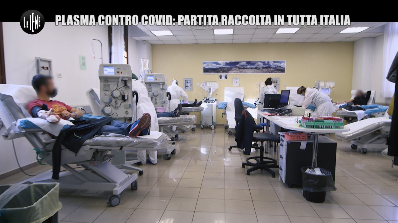 plasma iperimmune tamponi gratuito donatori