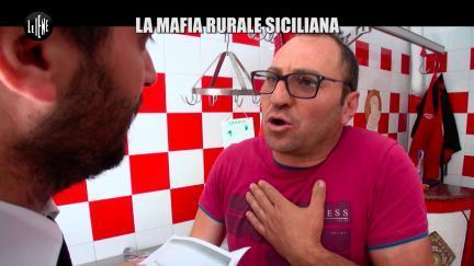 PECORARO: La mafia rurale siciliana