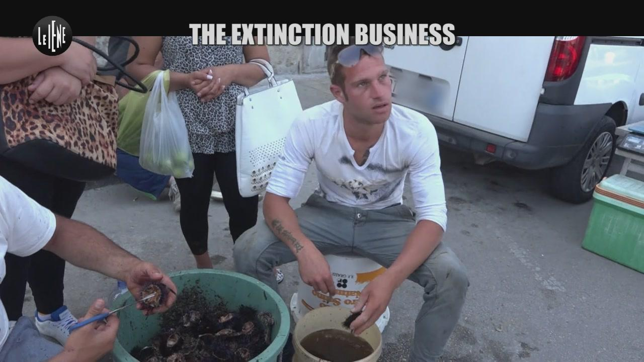PASCA: Extinction business